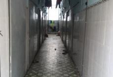 Bán nhà trọ gần QL13 12p 250m2 liền kề KCN dân cư đông đúc