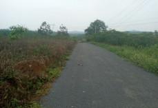 Cần Bán Lô đất gần ngã tư phùng hưng , Phan Đình Phùng, phường Lộc Tiến ,tp Bảo Lộc