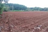 Đất thổ cư SHR 2mt diện tích: 5x40 giá đầu tư