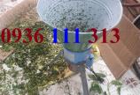 Máy Băm Bèo 550W – 250kg/giờ