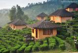 Đất ở nông thôn khu vực Lộc Nam từ 1,4 triệu