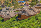 Đất Bảo Lộc, Lộc Nam chỉ 1,6tr/m2. Vị trí vàng, nhiều tiềm năng