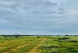 Bán đất cách đường 716 1km giá 230.000đ/m2.