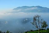 làng thiền sinh thái ,nghỉ dưỡng bảo lộc view núi đại bình thơ mộng