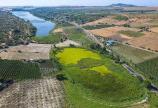 Bắc Bình Farmstay Bình Thuận 70k/m2. sang tên trong 7 ngày